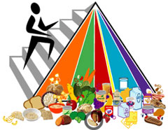 New Food Pyramid